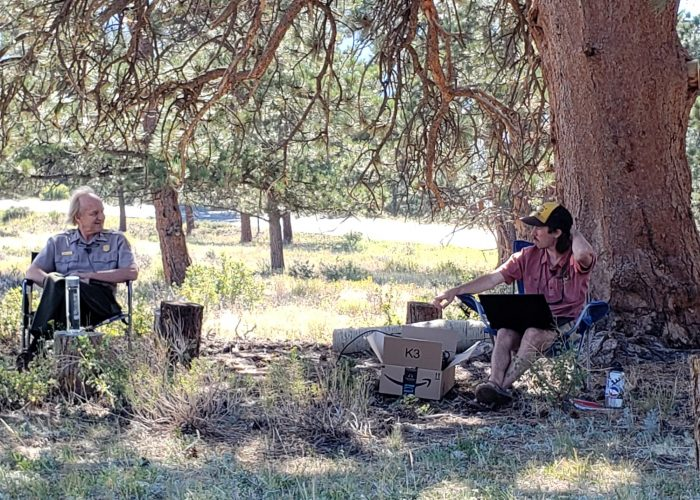 Two people sit in chairs beneath a large pine tree.